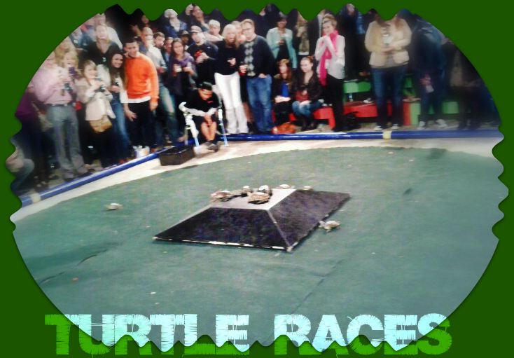 Little Woodrow's Turtle Races